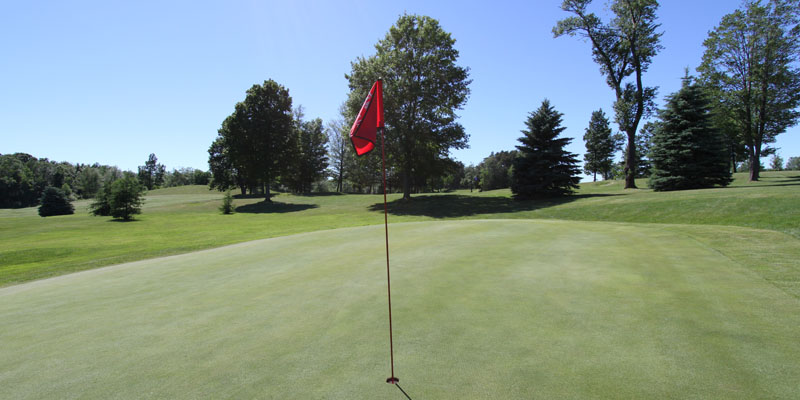 Photo of Par 4 Hole 8 at Tamarack Golf Club in Oswego, NY.